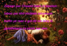 तन्हा खून जम रहा है वादी ए गुल की रंगत का funny shayari ,
