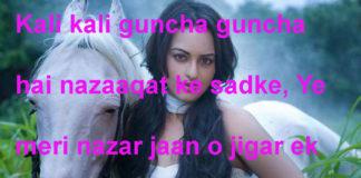 हाल ए दिल से बड़े बेचैन लगते हैं जनाब friendship shayari in hindi,