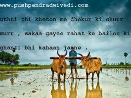 उठती थी खेतों में ढेंकुर की चुर्र मुर hindi literature ,