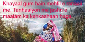 बर्बाद ए मोहब्बत का तमाशाई था ज़माना सारा quotes life hindi ,