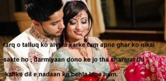 मुलाज़िमों की तरह सजा के रखे हैं बुत अज़ायब घरों में hindi shayari ,