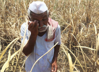 farmers situation in india truthful short story ,