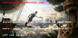 one line thoughts on life in hindi करवट बदलते यार की राहों में शब् भर मरे ,