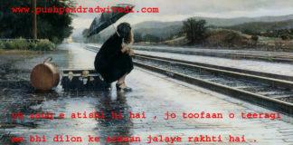 quotes on darkness in hindi ये ज़ौक़ ए आतिशी ही है ,