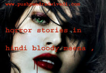 horror stories in hindi bloody meena ,