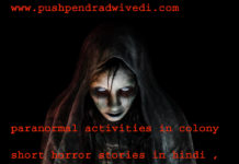 paranormal activities in colony short horror stories in hindi ,